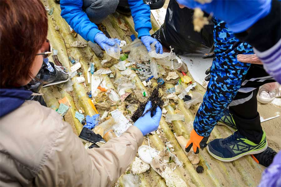 Récolte de déchets après un nettoyage de plage. Shutterstock
